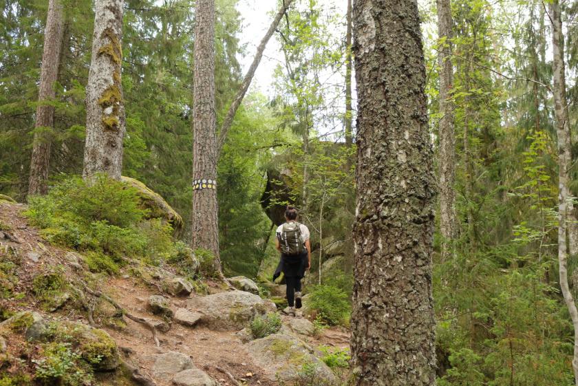 Wanderung im Tiveden Nationalpark - purelimon